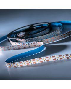 FlexOne250 Performer Samsung LED Strip warm white 2700K 11825lm 12V 50 LEDs/m 5m roll (2365lm/m and 30W/m)