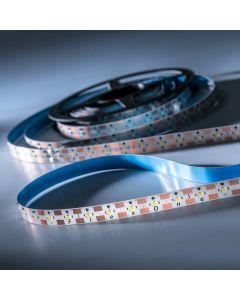 FlexOne250 Performer Samsung LED Strip cold white 6500K 12875lm 12V 50 LEDs/m 5m roll (2575lm/m and 30W/m)