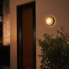 Philips Hue White and Color Ambiance LED Wall Light Daylo silver 1050lm