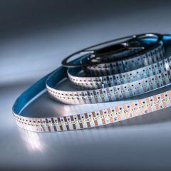 FlexOne500 Performer Samsung LED Strip cold white 6500K 19000lm 12V 100 LEDs/m 5m roll (3800lm/m and 42W/m)