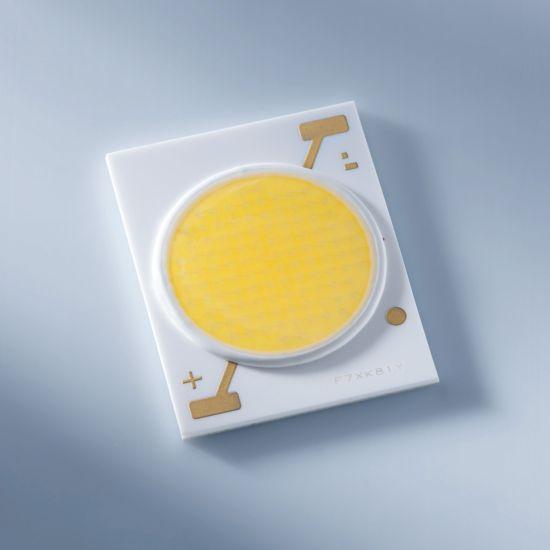 Nichia NVEWJ048Z-V1 (Rs030) 24x19mm COB LED White light for produce (fruits, vegetables, flowers) 3200K CRI 6070lm