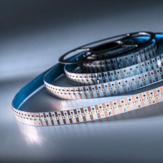 FlexOne500 Performer Samsung LED Strip neutral white 4000K 19000lm 12V 100 LEDs/m 5m roll (3800lm/m and 42W/m)