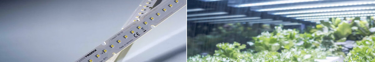 LinearZ LED modules for Horticulture Lighting
