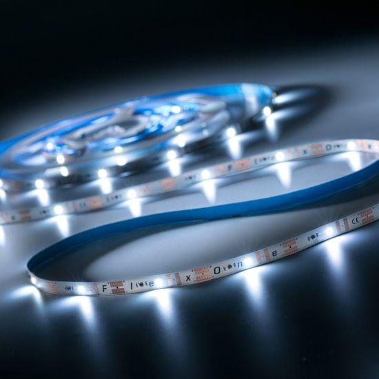 FlexOne100 Performer Samsung LED Strip cold white 6500K 6640lm 12V 20 LEDs/m 5m roll (1328lm/m and 16.8W/m)